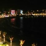 Las Palmeras Exóticas del Malecón de Mazatlán