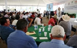 Centro de Innovacón y Transferencia Tecnológica de Sinaloa 2016