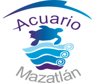 Cisnes Negros de Acuaro Mazatlán Presentación Oficial