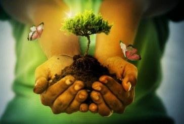 Día Internacional de la Madre Tierra