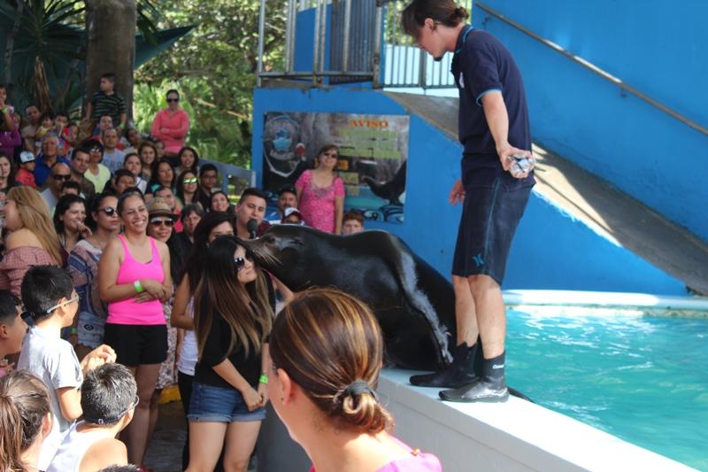 bonanza-de-turistas-acuario-mzt-3