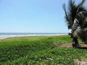 CIP Playa Espiritu Avanza con paso seguro Eduardo Bazúa (1)