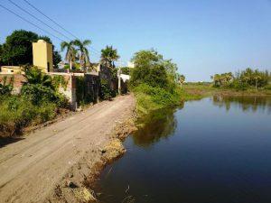 Mazatlán Naturaleza y Desarrollo: Encrucijada