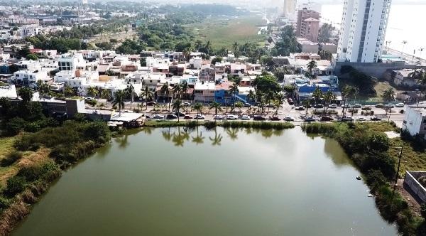 Mazatlán: y la naturaleza salvaje que agoniza ante nuestros ojos